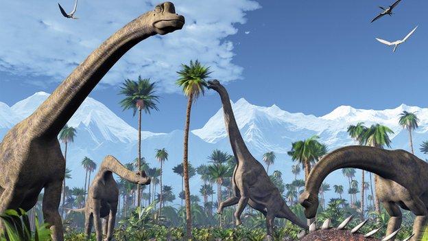 Dinosaur Fun Facts - Part 2